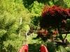 asijska-zahrada2