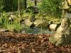 buhha-asijska-zahrada