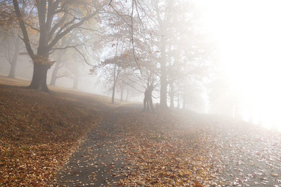 počasí mlha Hukvaldy.jpg
