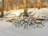 počasí Hukvaldy sníh.jpg
